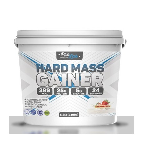 Hard Mass Gainer 2400 g. ProLab – «СпортМеню»