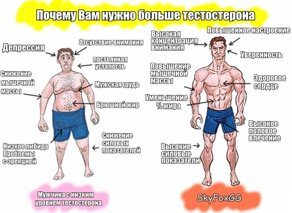 Как повысить тестостерон в 45 лет